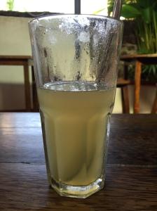 The humble ginger lemon soda