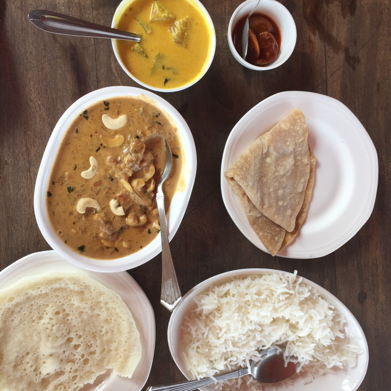 Lunch: Panner and cashew curry at the Ginger House.