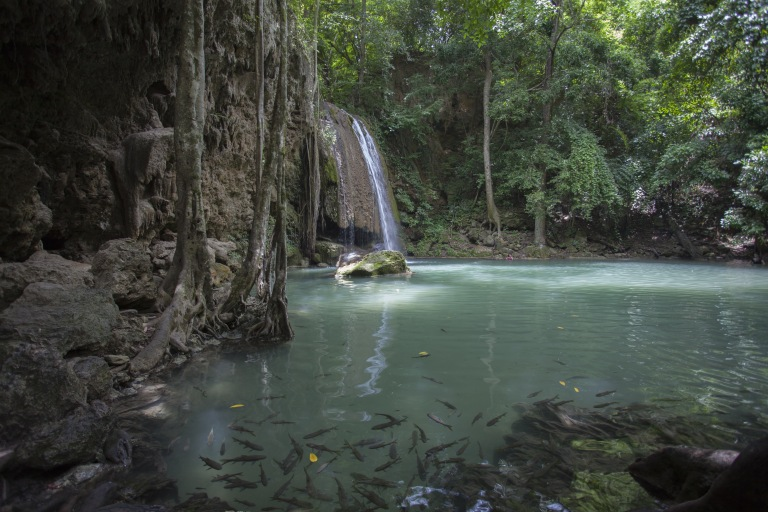 Waterfalls and a pond full of fish in Kanchanaburi