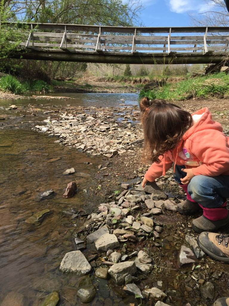Young child grabbing stones in a creek