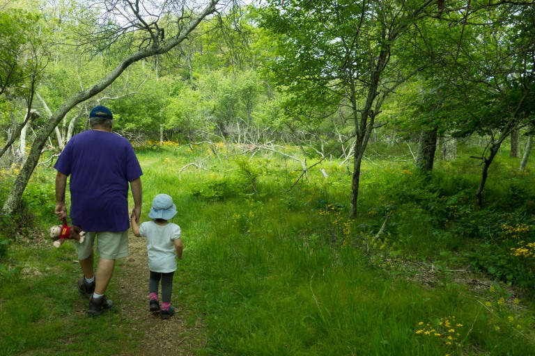 Grandfather and grandchild walking the Story of the Forest path in the Shenandoah National Park