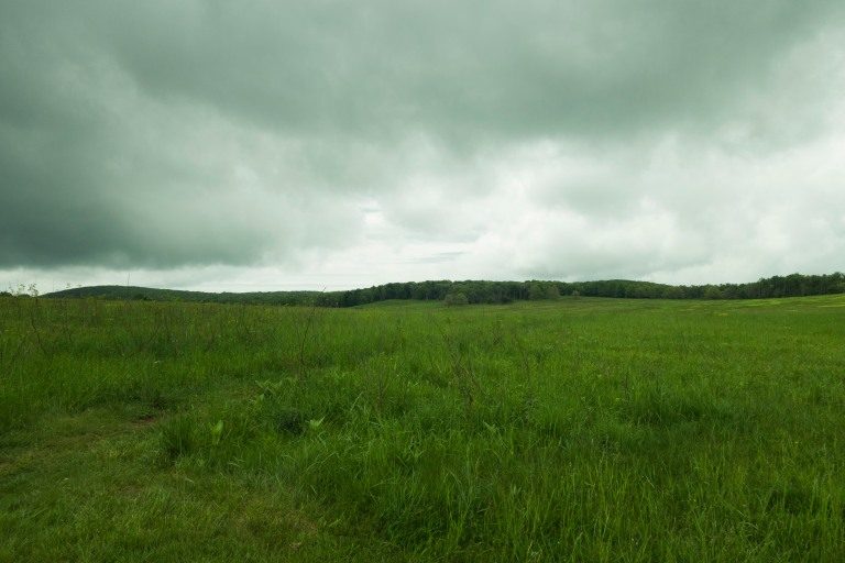 Expansive view of the Big Meadows with cloudy weather, Shenandoah National park