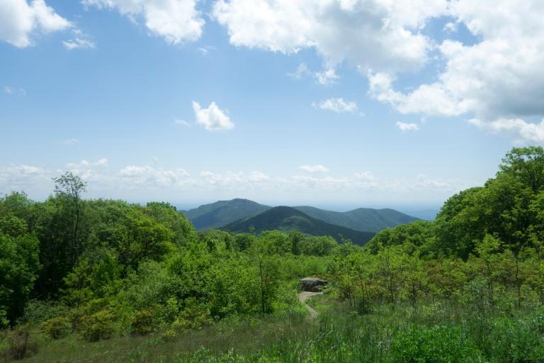 Lush green mountain views in Shenandoah National Park