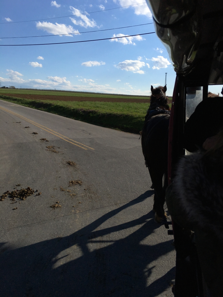 View from a horse drawn wagon in Amish country Pennsylvania