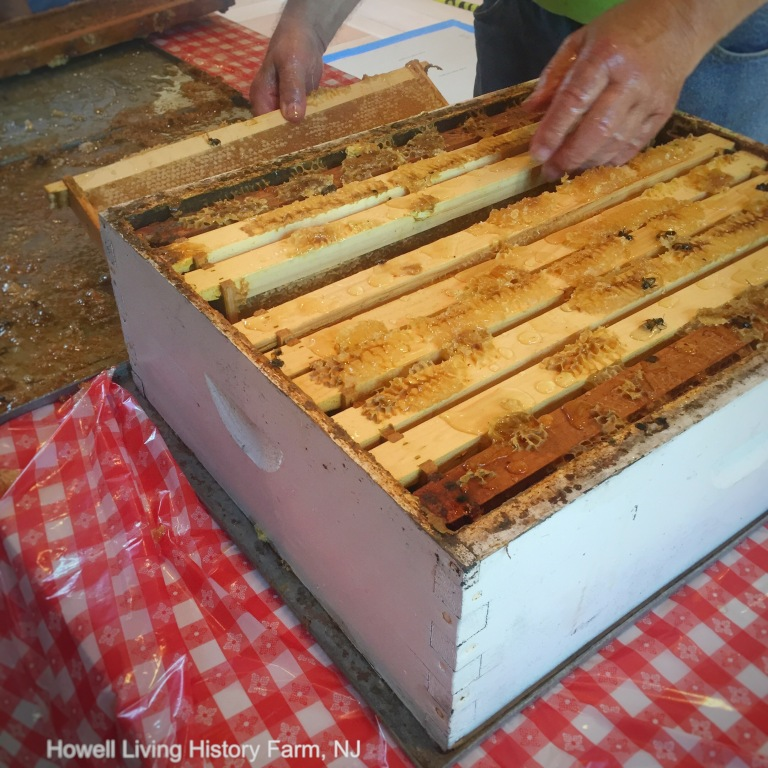 The loaded panels from a wooden beehive being removed