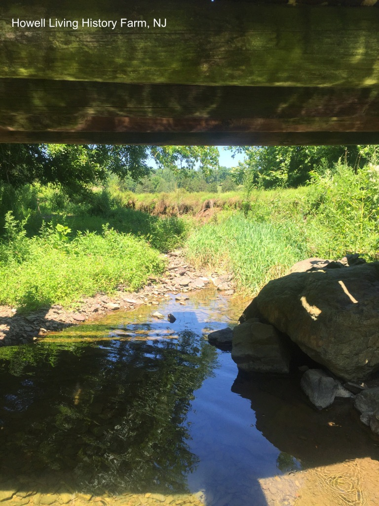 A small creek in the shade of a little wooden bridge